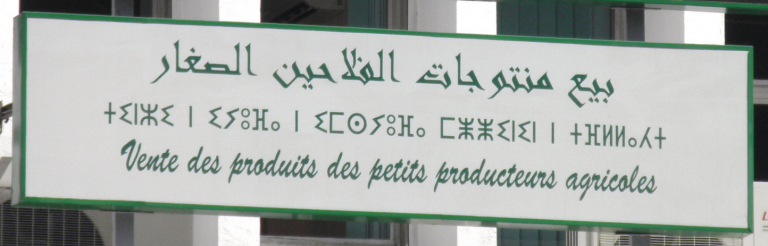 Text in Arabic (top) neo-Tifinagh script (middle) and French (bottom) on a sign in Morocco